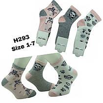 Детские демисезонные носочки для девочек ( мин. заказ 12 шт. в уп. ) 1-8 лет