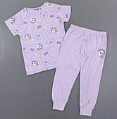 Піжама для дівчаток Setty Koop, 4-12 років. Артикул: FR1078-бузок