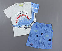 Пижама для мальчиков Setty Koop, 1-5 лет. Артикул: PJM109-серый