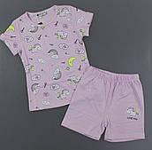 Піжама для дівчаток Setty Koop, 98-122 рр. Артикул: PJM113-ліловий