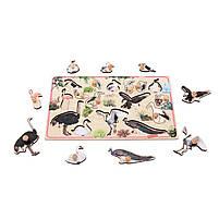 Рамка вкладыш Птицы Т634 Komarovtoys 50х30х3,5 см, фото 4