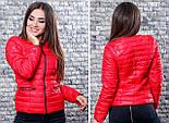 Женская стильная куртка (утеплитель-синтепон 100), фото 4