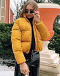 Куртка жіноча демісезонна в кольорах (Норма), фото 3
