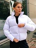 Куртка жіноча демісезонна в кольорах (Норма), фото 5