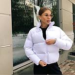 Дутая женская курточка на синтепоне в расцветках (Норма), фото 3