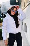 Дута жіноча курточка на синтепоні в кольорах (Норма), фото 10