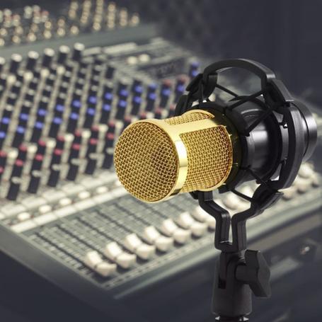 Мікрофони, стійки, пантографи
