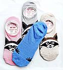 Сліди шкарпетки жіночі р. 23-25 бавовна стрейч Україна. Від 6 пар по 8грн, фото 2