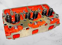 Головка блока цилиндров А-01 и Д-461 ( 01МТГ-06С9)