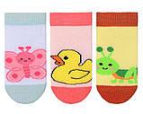 Набір 3 шт. Шкарпетки для немовлят укорочені Bross, фото 5