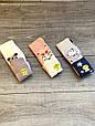 Колготи дитячі бавовна KBS з малюнком мишки прикрашені люрексом для дівчаток 5 років 6 шт в уп мікс з 3х кол, фото 5