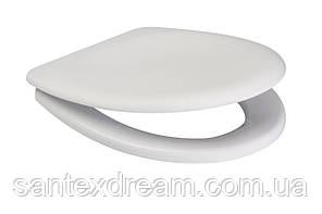 Сиденье для унитаза DELFI антибактериальное, Duroplast, soft-close