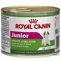 Royal Canin Junior - консервы для щенков в возрасте до 10 мес, Вес 195гр. 12шт