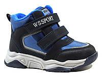 Черевики WeeSTEP арт.5245-DB, синій-електрик, Синий, 26, 17.0