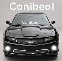 """Наклейка на стекло """"Canibeat"""" или любая надпись под заказ. Наклейки на стекло авто, на кузов, куда угодно.в"""