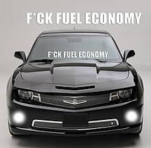 """Наклейка на стекло """"F*CK FUEL ECONOMY"""" любая надпись под заказ. Наклейки на стекло авто, на кузов, куда угодно"""