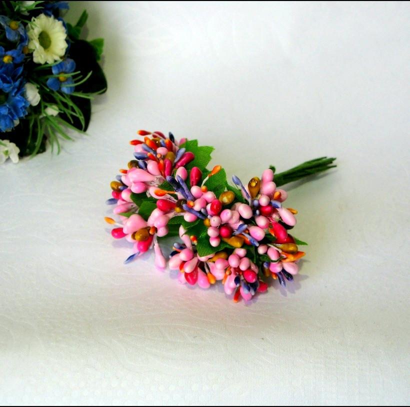 Тичинки складні на гілочках.Колір мікс.- рожевий+ малиновий.