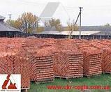 Кирпич рядовой строительный М125 полнотелый, фото 5