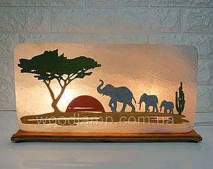 Соляний світильник Прямокутник Слони кольоровий