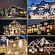 Лазерний проектор для будинку Star Shower White Криву WP1 | гірлянда лазерна підсвічування для будинку, фото 3
