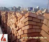Кирпич рядовой строительный М100 пустотелый, фото 3