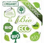 Органик – качество нашей жизни