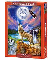 Пазлы Castorland 1500 элементов Ночь волка Касторленд
