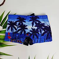 Купальні плавки шорти для хлопчика з тропічним принтом р 6-10