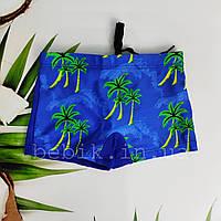 Дитячі плавки-шорти для хлопчика з пальмами р 3-7
