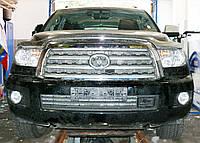 Декоративно-защитная сетка радиатора Toyota Tundra фальшрадиаторная решетка, бампер, фото 1