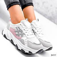 Кросівки жіночі Bella сірий + білий + пудра 3497, фото 1