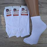 Носки женские Белые короткие х\б 36-40 ,,KOI,, Житомир, фото 3