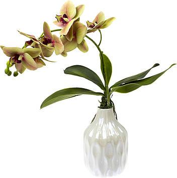 Фаленопсис у вазі декор. h-15,5 см