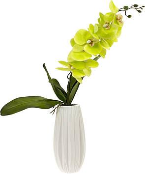 Фаленопсис у вазі декор. h-24,5 см