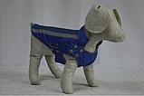 Попона фліс для собак 20х25х4 см Лорі №1, фото 5