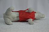 Попона фліс для собак 20х25х4 см Лорі №1, фото 4