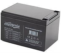 Аккумуляторная батарея EnerGenie 12V 12AH (BAT-12V12AH) AGM