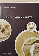 В. И. КОЗЛОВ , О. А. ГУРОВА Анатомия скелета
