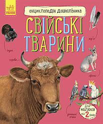 Книга Свійські тварини. Енциклопедія дошкільника. Автор - Юлія Каспарова (Ранок)