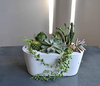"""Бетонное кашпо """"Овал"""" /бетонный горшок /Бетонная емкость для растений/Кашпо для комнатный растений"""
