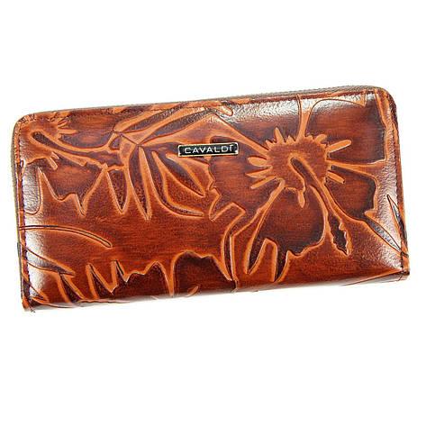 Женский кошелек из экокожи Cavaldi PN25 LF Красный, фото 2