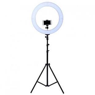 Кольцевая лампа LED 26см с креплением для устройства и штативом