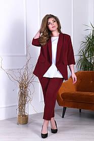 Брючный костюм тройка жакет блузка и брюки Большого размера Бутылка, Электрик Марсал