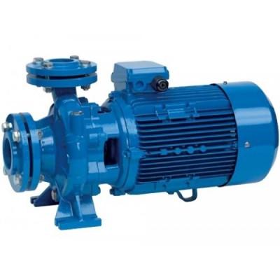 Промышленный центробежный моноблочный насос Speroni CS 80-160D