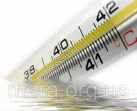 Термометр ртутный медицинский, фото 2