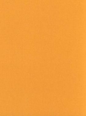 Апельсин / Оранж
