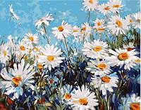 Набор акриловой живописи Картина по номерам Цветы Лесные ромашки Идейка раскраска на холсте KHO2918 40х50 см