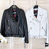 Куртка жіноча натуральна *ADAMO*, шкіра теляча преміум, розмір С,М,Л,ХЛ,білий,чорний колір, фото 2