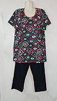 Дачный Комплект футболка с бриджами из трикотажа   хлопок для дома и улицы из очень хорошего трикотажа р48-62