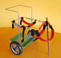 Инвалидная коляска для собак для Таксы